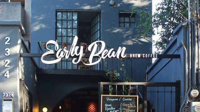 Early Bean