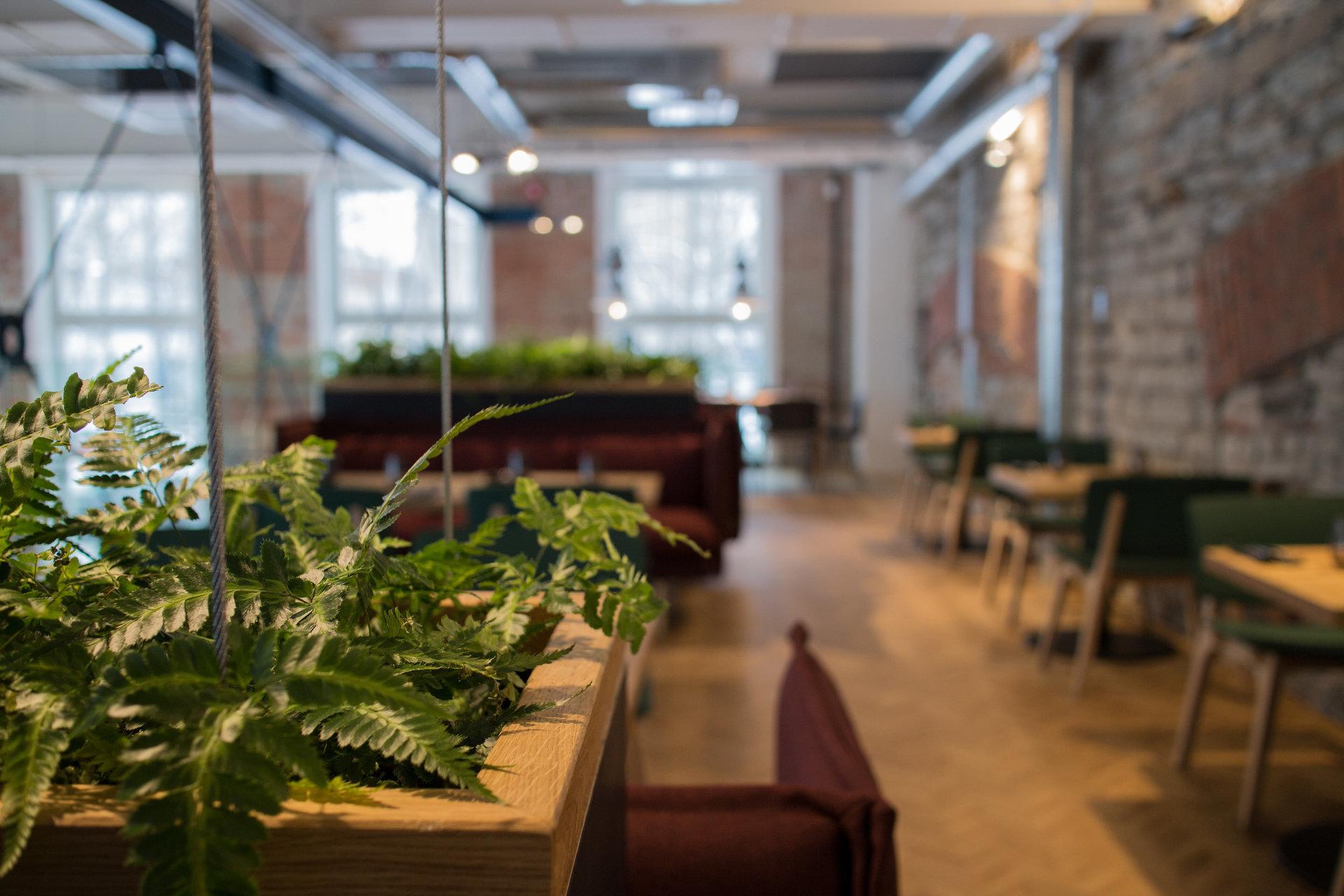 Gourmet Coffee restoran JUUR: A Work-Friendly Place in Tallinn